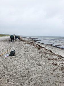 Felttur til Solrød Strand